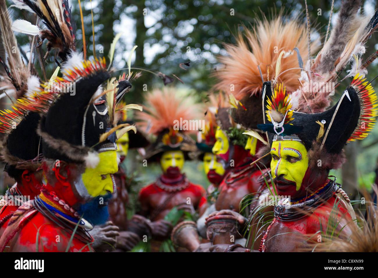Bird Of Paradise Dance Stock Photos & Bird Of Paradise Dance