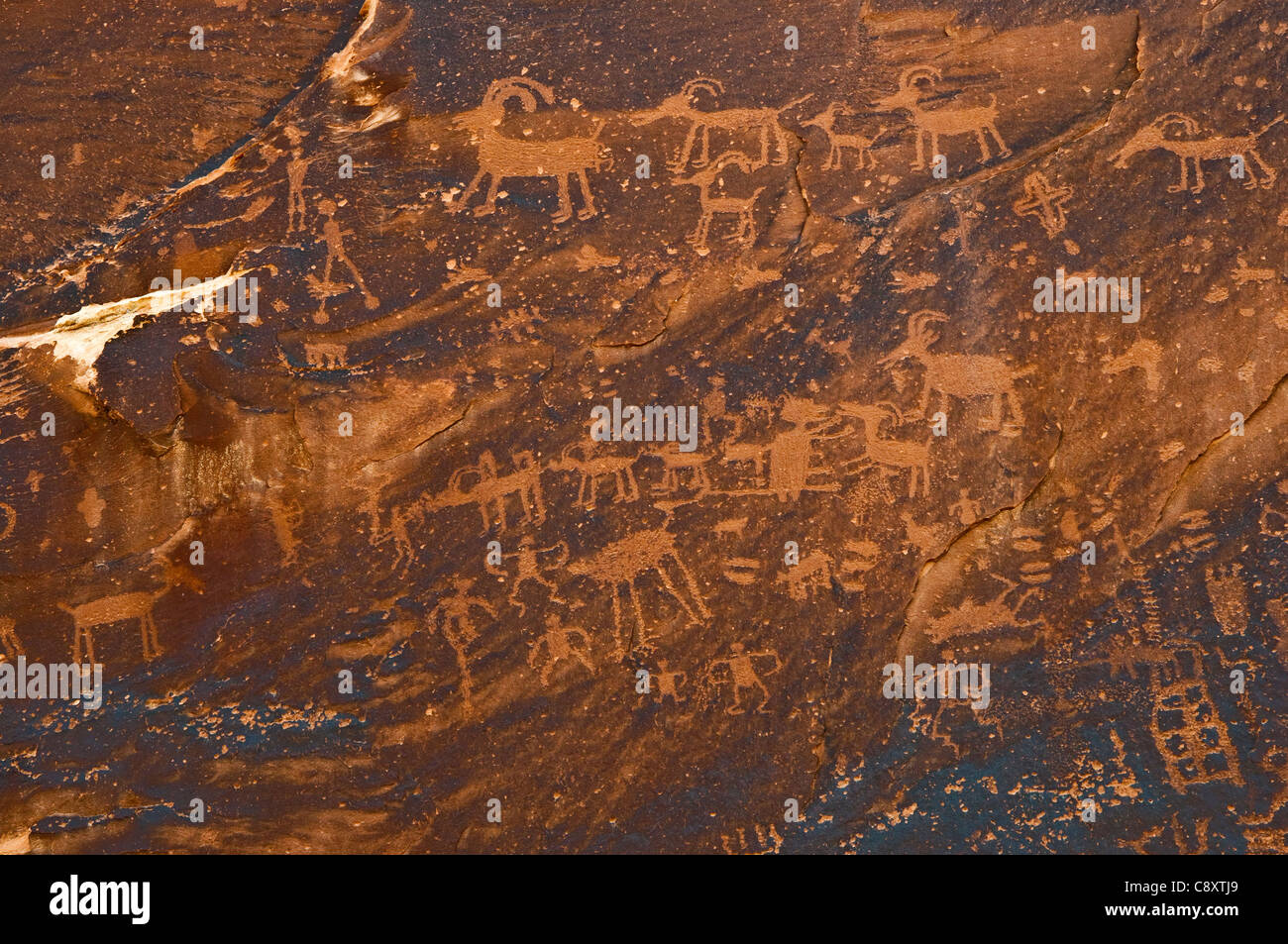 Sand Island petroglyph site over San Juan River, Bears Ears National Monument, near Bluff, Utah, USA - Stock Image