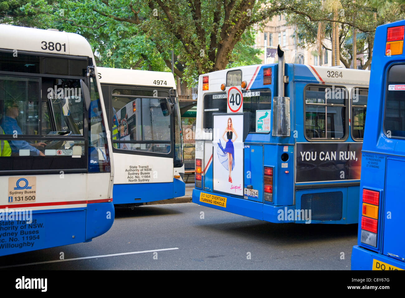 traffic congestion in sydney with many buses competing for road space,australia - Stock Image