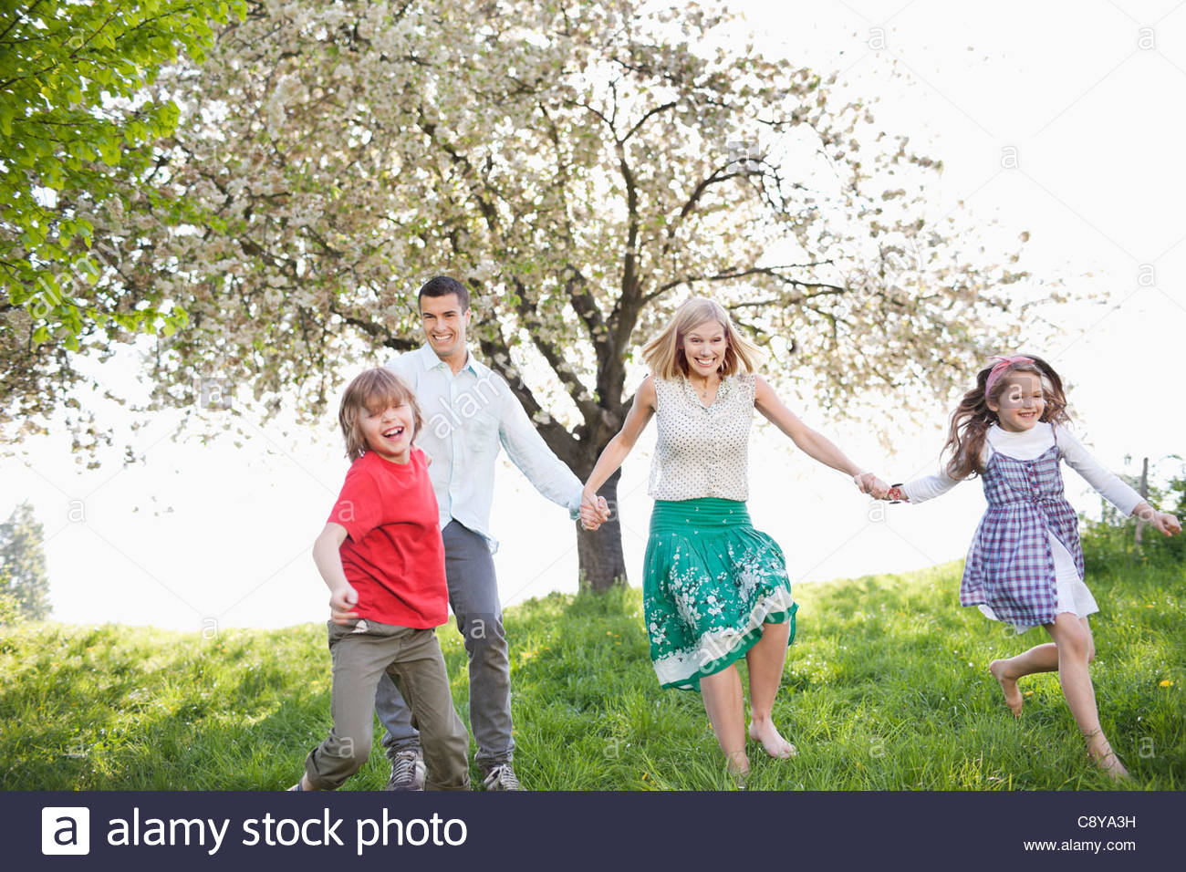 Family holding hands in park - Stock Image