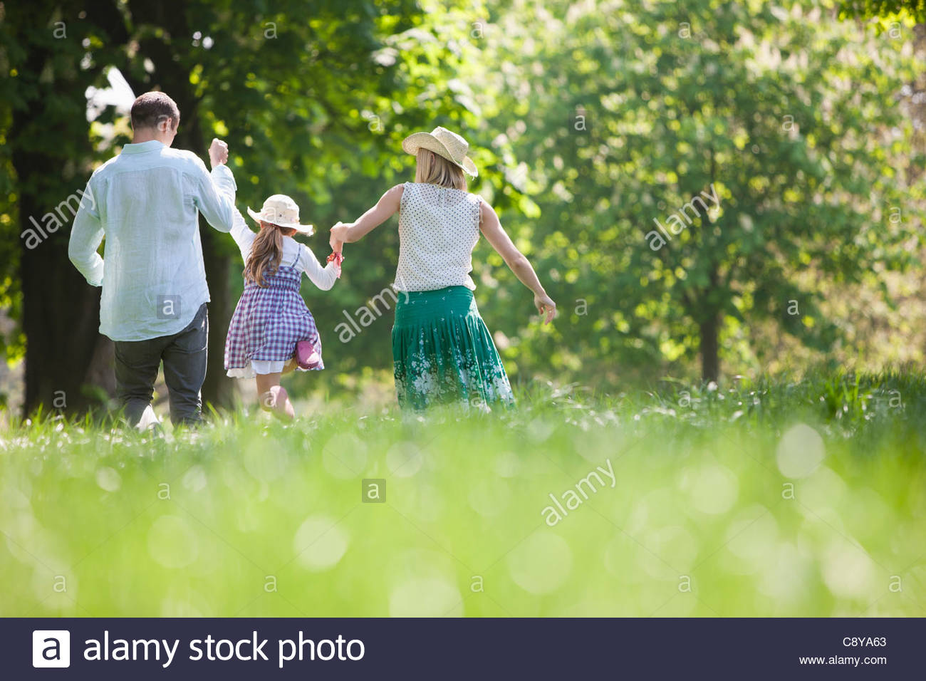 Family walking hand-in-hand in park - Stock Image