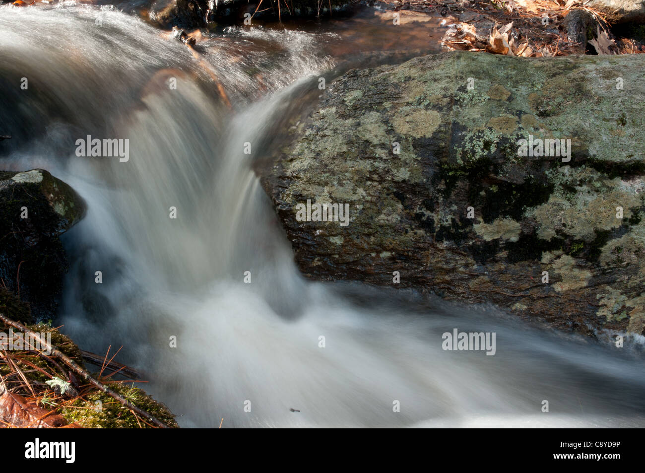 Small brook, full with spring runoff, Harold Parker State Forest, Andover, MA - Stock Image