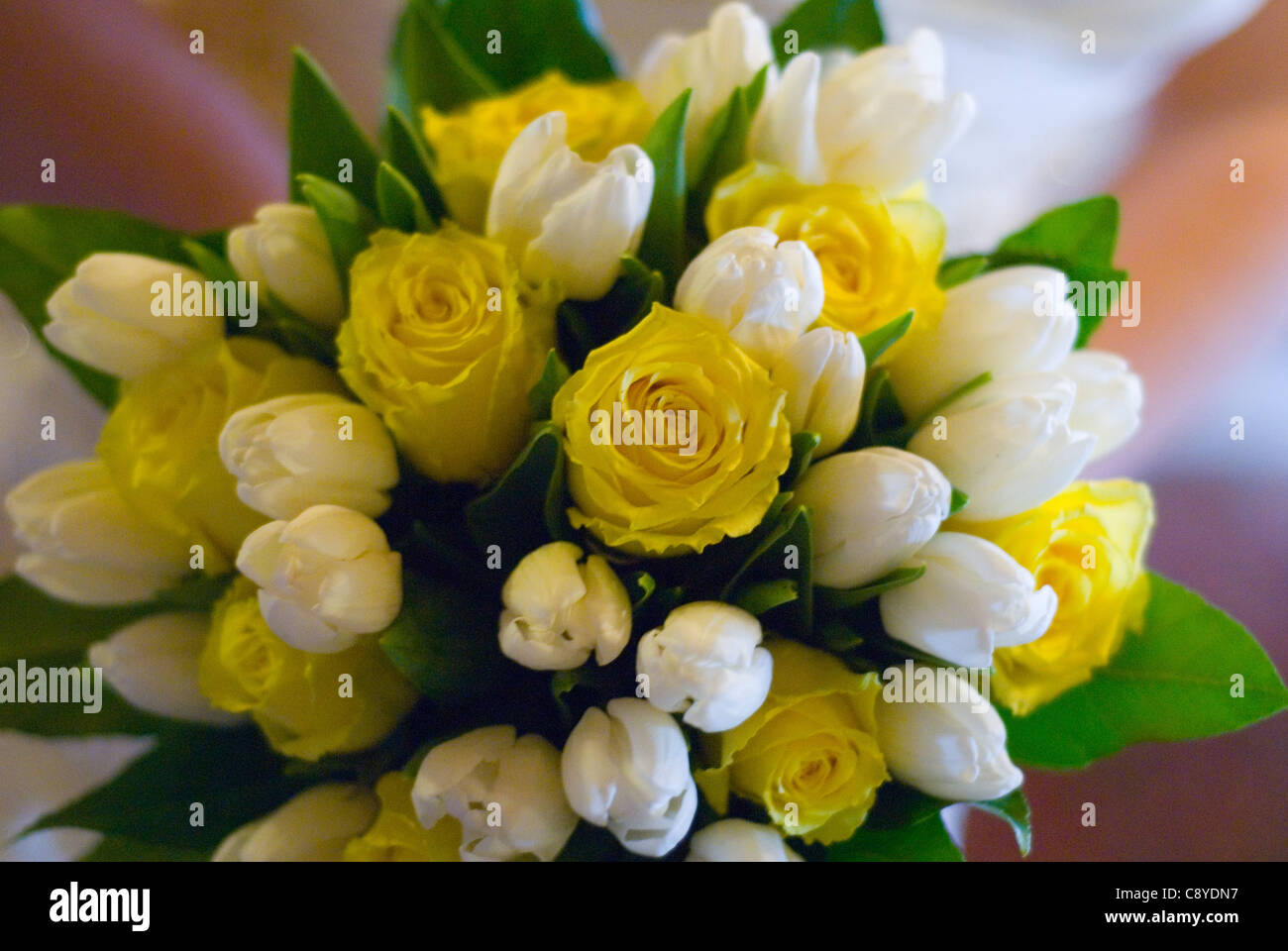 Yellow rosebud and white tulip bridal bouquet stock photo 39941475 yellow rosebud and white tulip bridal bouquet mightylinksfo