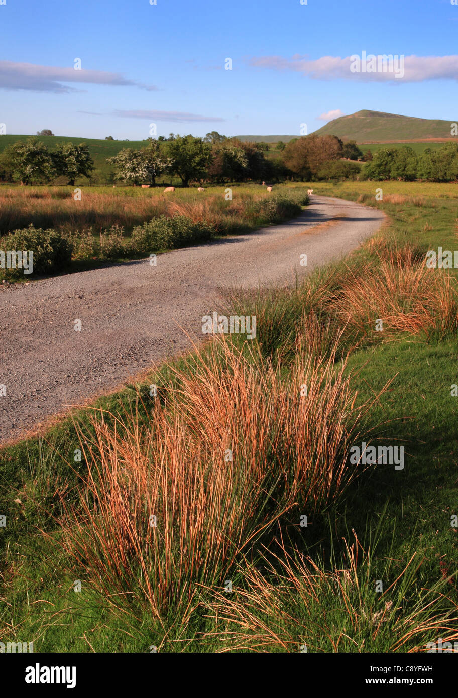 Rhos Fach Common with the Black Mountains in the distance, Brecon Beacon's National Park, Powys, Wales, Europe - Stock Image