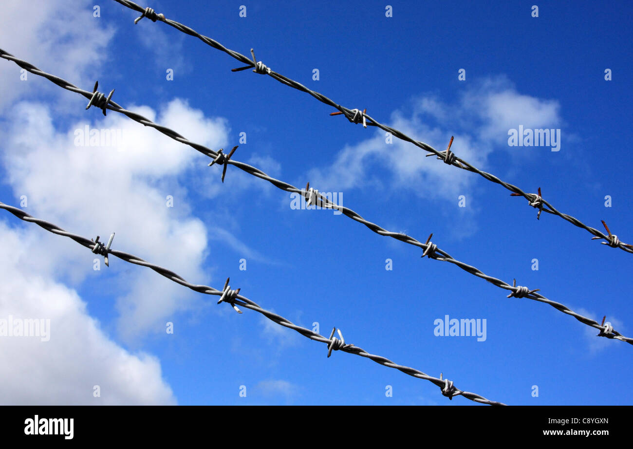 Barbed Wire set against a blue sky, Worcestershire, England, Europe - Stock Image