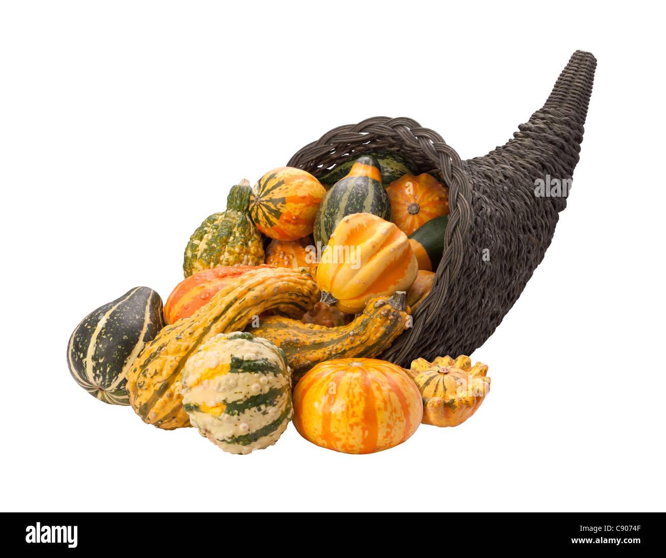 Cornucopia Gourds Isolated on a white background. - Stock Image