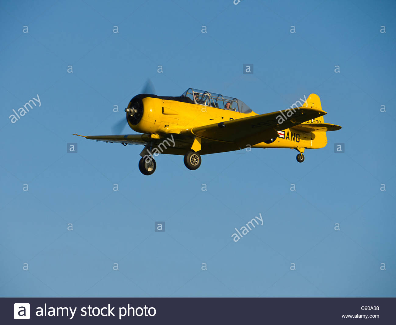 Aircraft Harvard Trainer on finals Goodwood Sussex - Stock Image