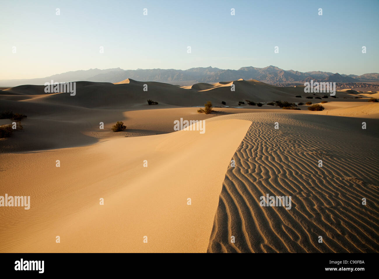 Mesquite Flat Sand Dunes, Death Valley, Nevada, USA - Stock Image