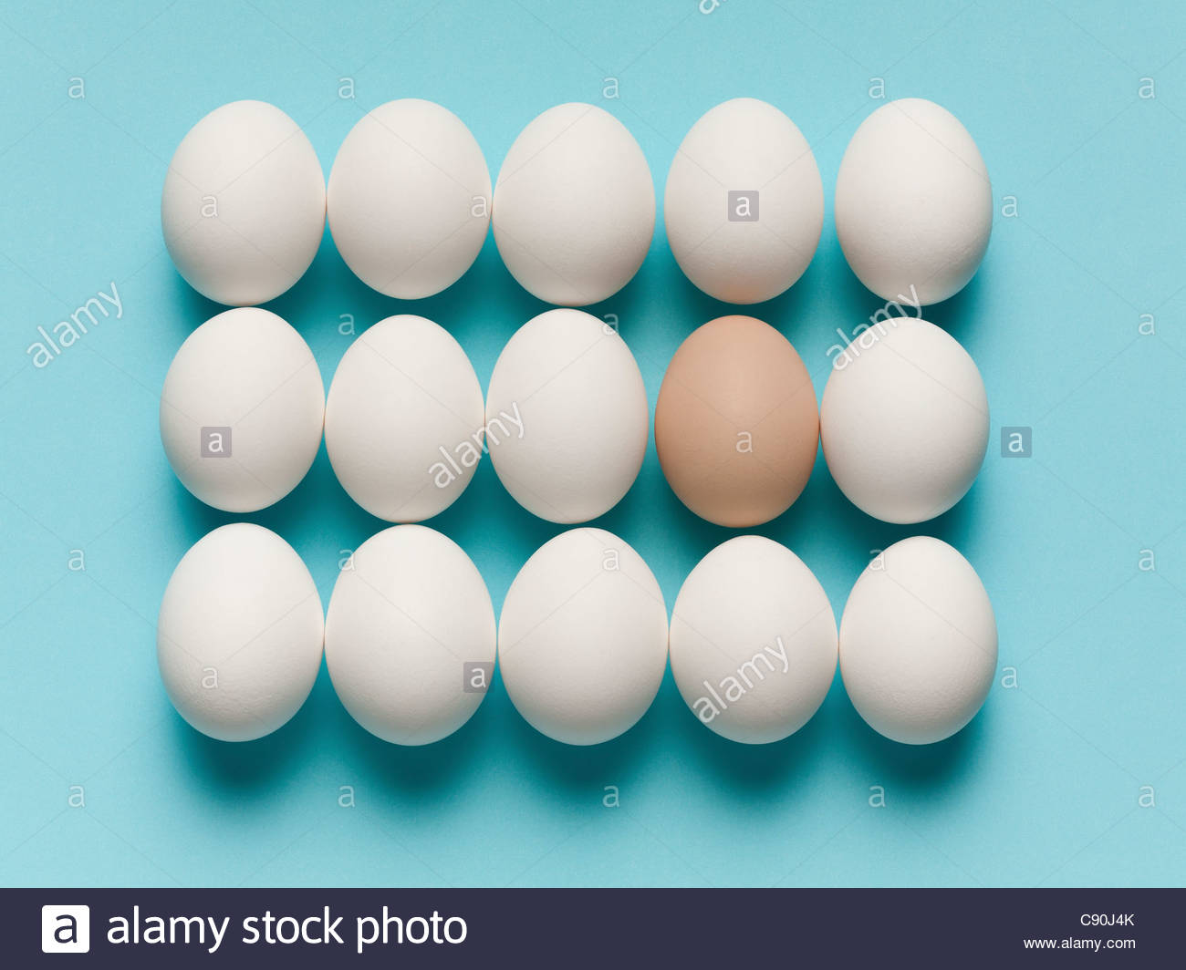 Brown egg with large white eggs - Stock Image