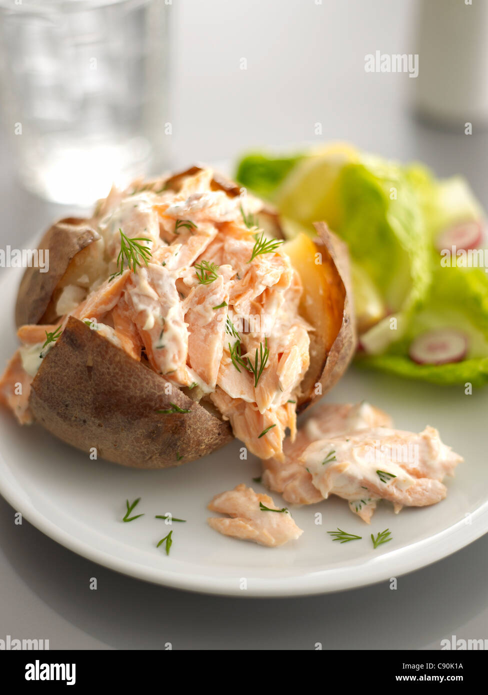 salmon, mayonnaise and fennel baked potato - Stock Image