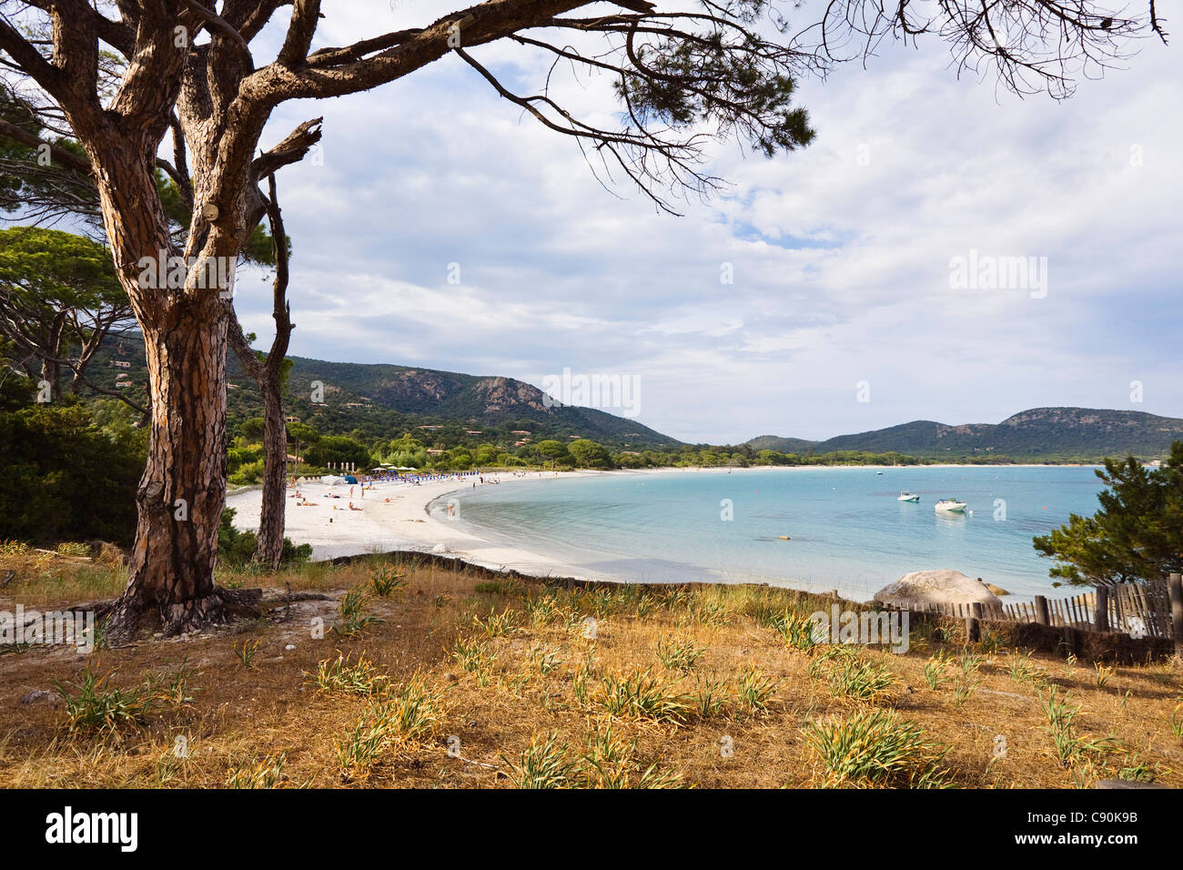 Beach of Palombaggia, sout-east coast, Corsica, France, Europe - Stock Image