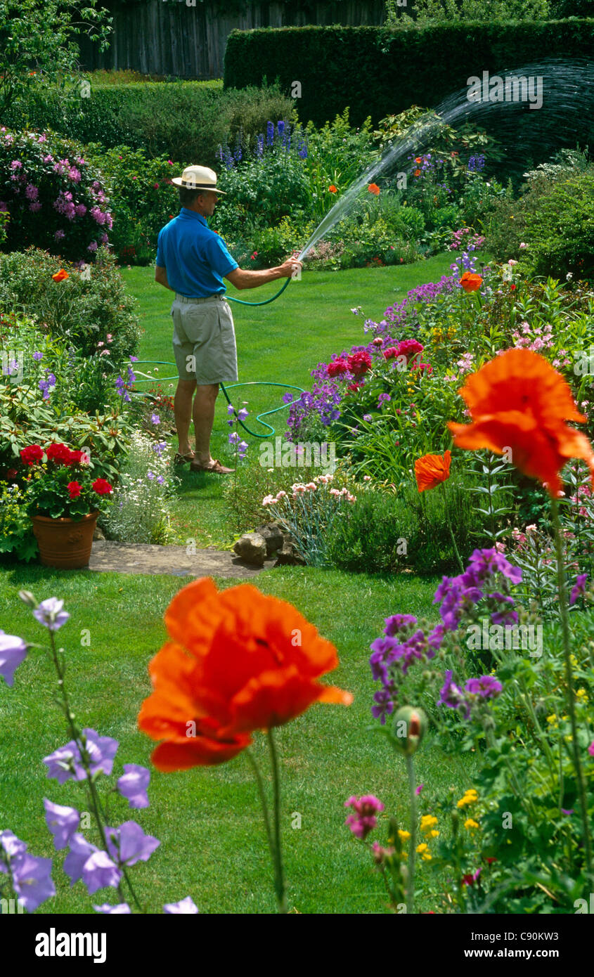 Annual flower bed traditional stock photos annual flower bed traditional english gardens have mixed borders of annual and perennial flowers most gardens need watering izmirmasajfo