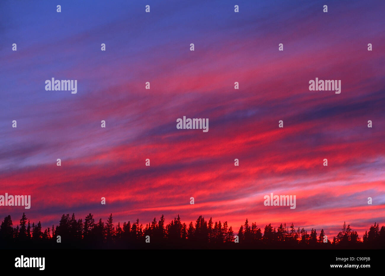 There are dramatic sunsets over the landscape of the Dalarna region. Lovasen, Norway - Stock Image