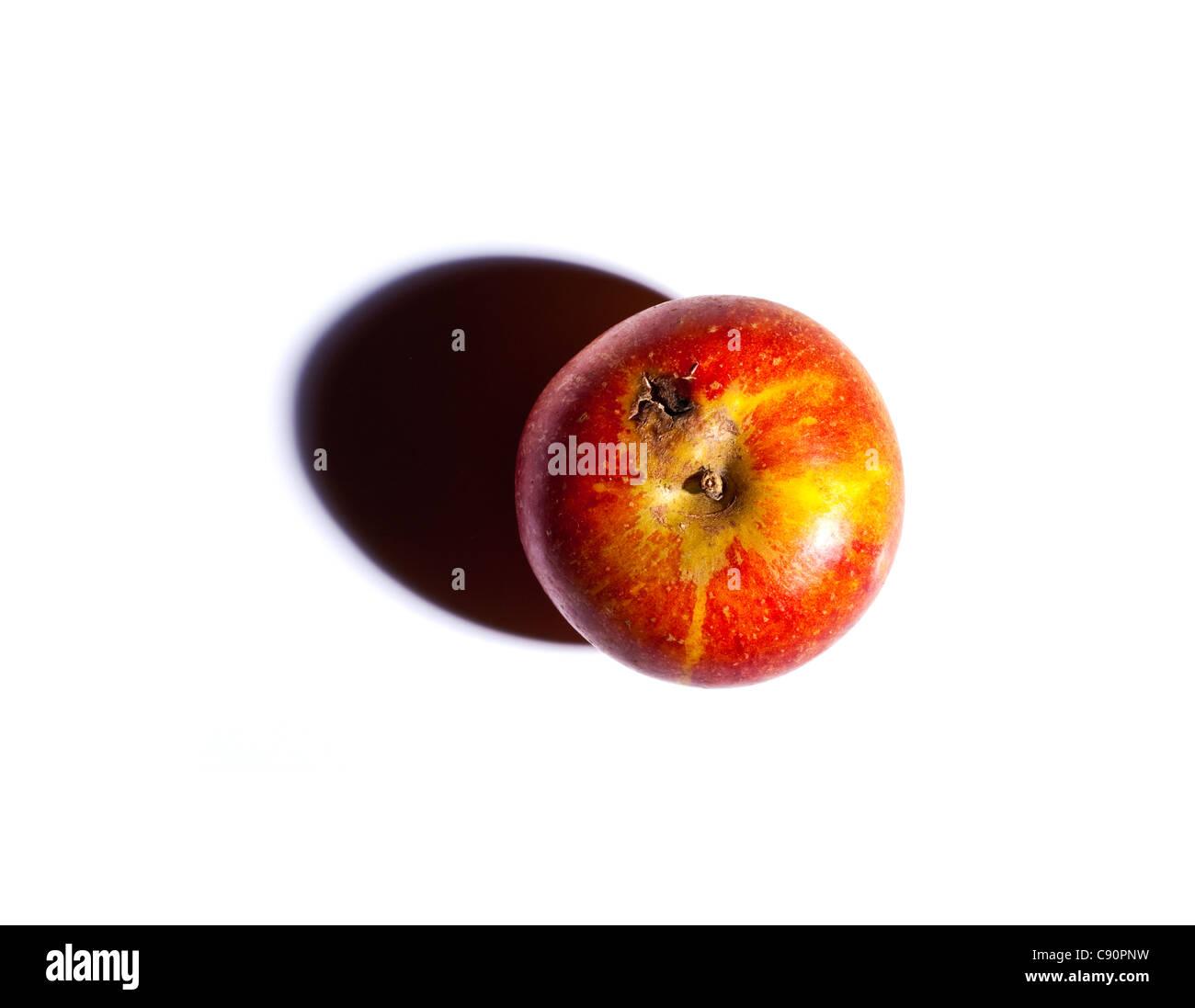 Red apple, studio shot - Stock Image