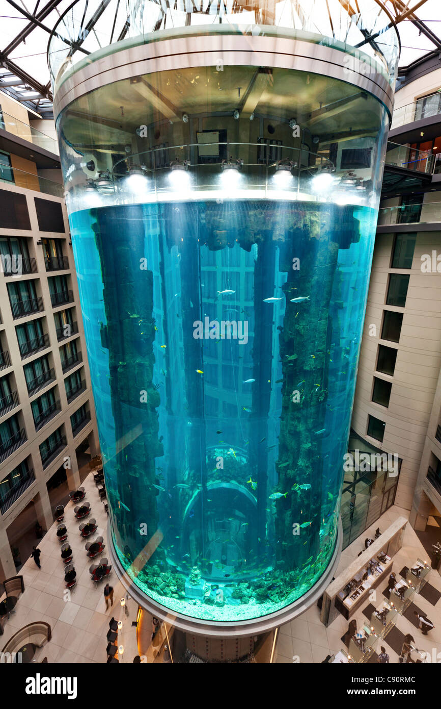 AquaDom, the largest cylindrical aquarium in the lobby of