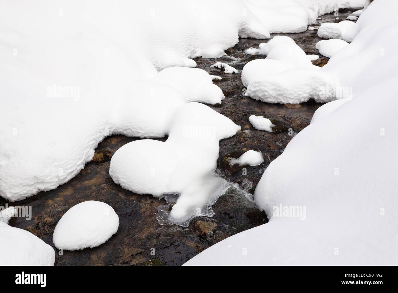 Creek Kleine Ohe with deep snow in winter, Bavarian Forest National Park, Lower Bavaria, Germany, Europe - Stock Image