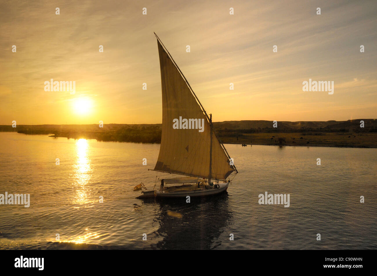 Feluccas or traditional boats have triangular sails and often offer tourist boat trips at the end of a hot day to - Stock Image