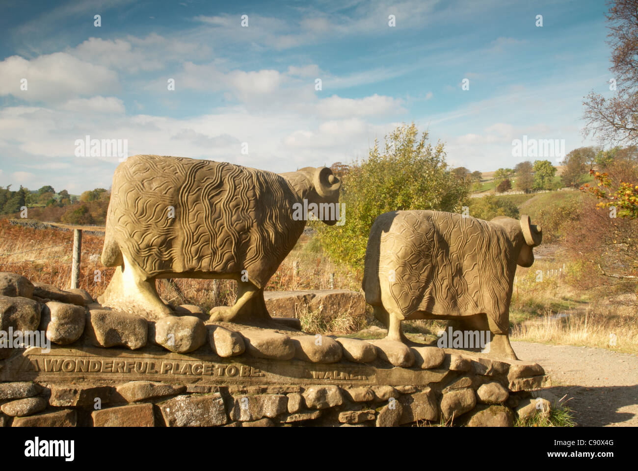 there are two sheep sculptures on the path to the River Tees and Low Force waterfalls at Bowlees. - Stock Image