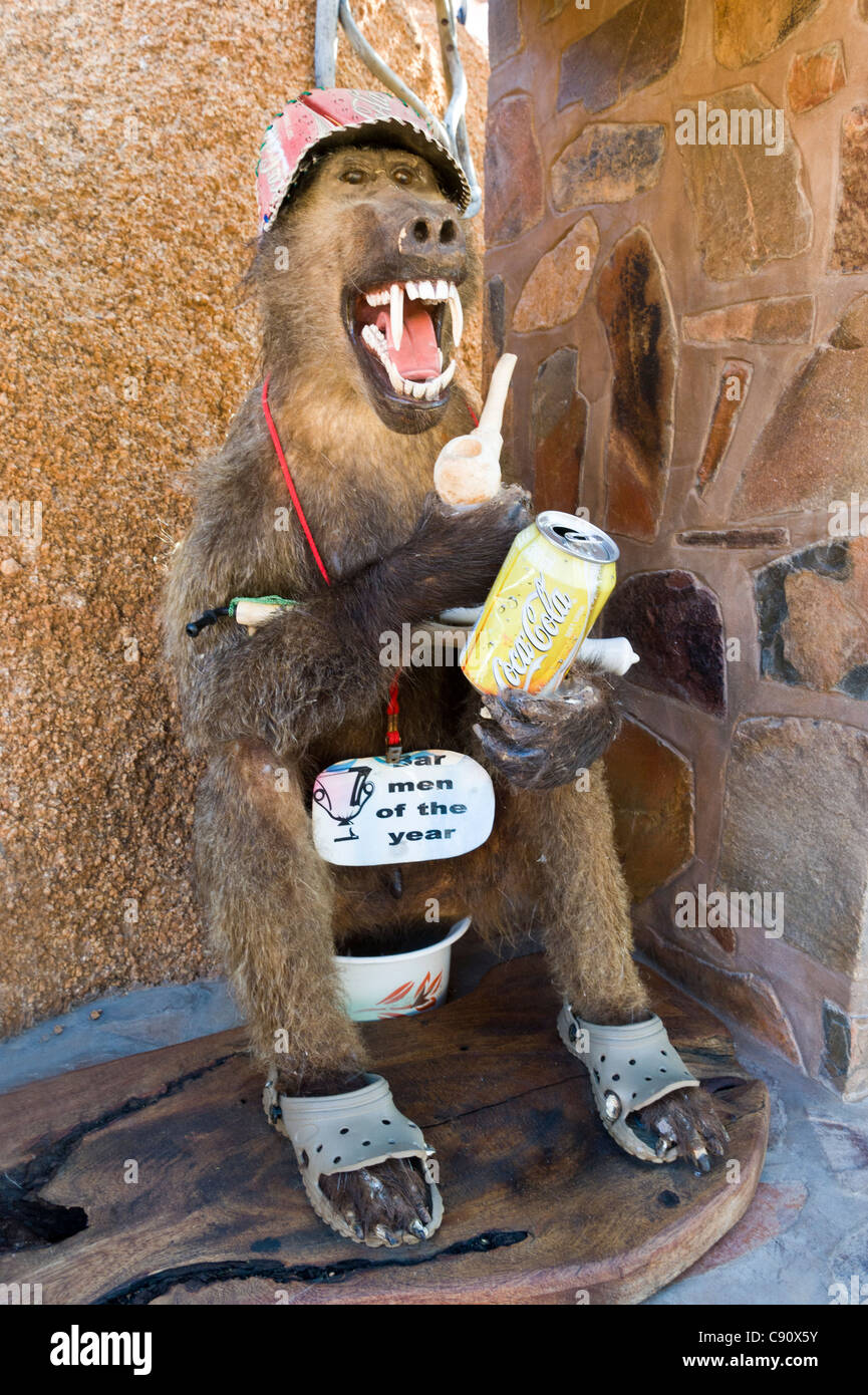 Absurd animal trophy with a sign 'Bar tender of the year' on a guest farm in Namibia - Stock Image