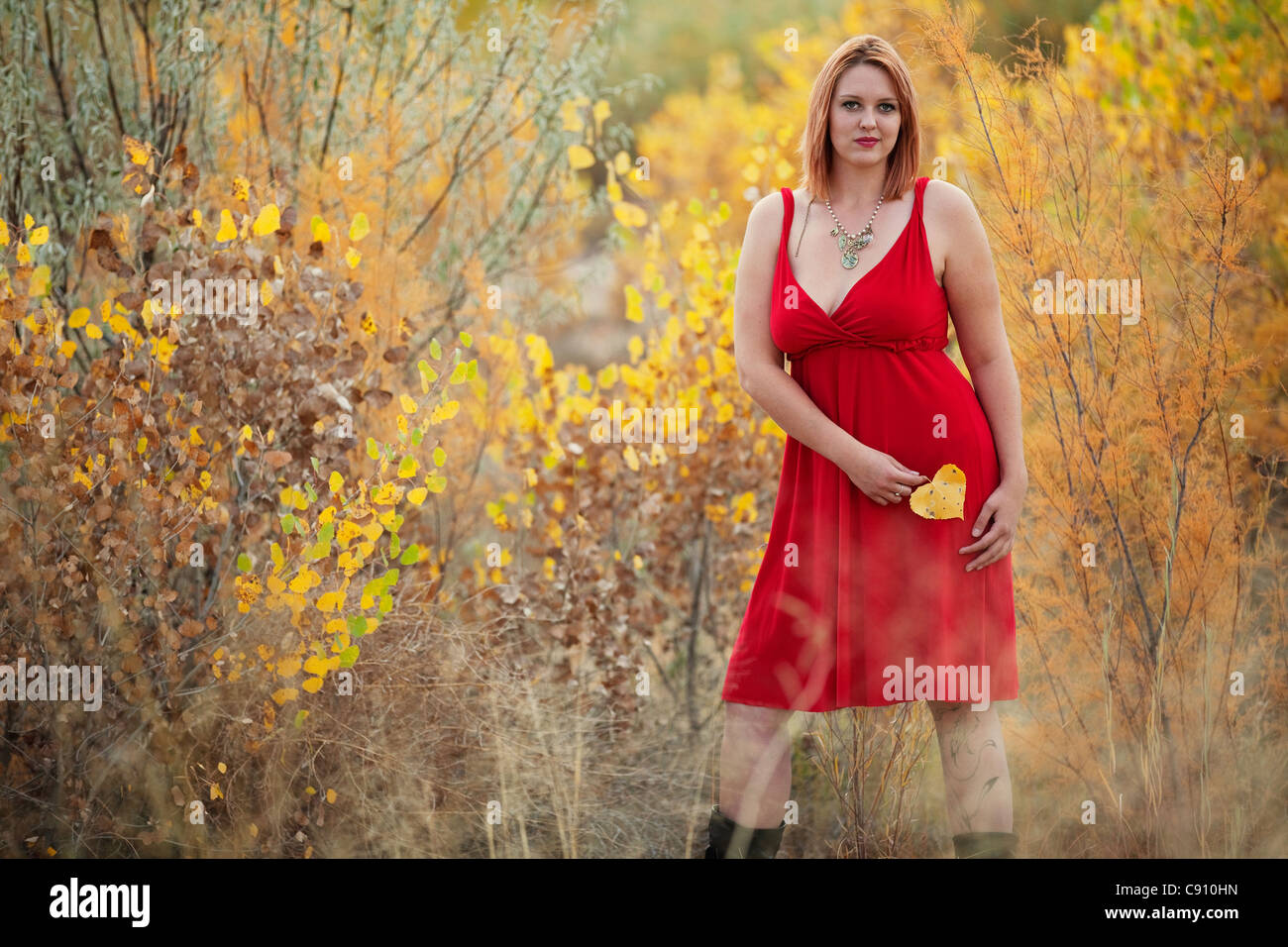 Beautiful Auburn Haired woman outdoors in nature, autumn. She is a Caucasian woman wearing a red dress.Stock Photo