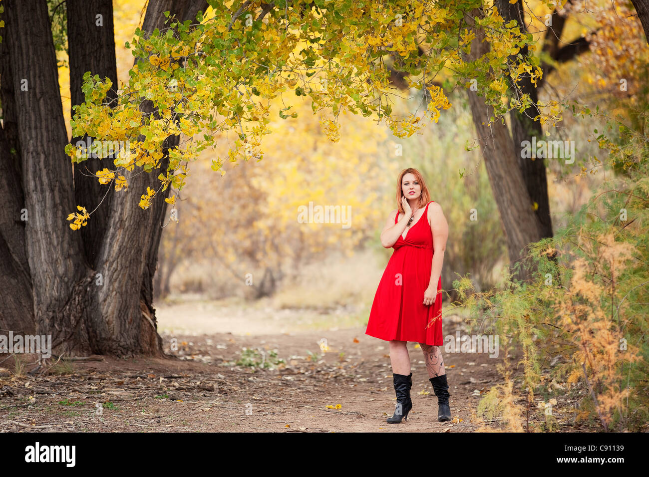 Beautiful Auburn Haired woman outdoors in nature, autumn. She is a Caucasian woman wearing a red dress. Stock Photo