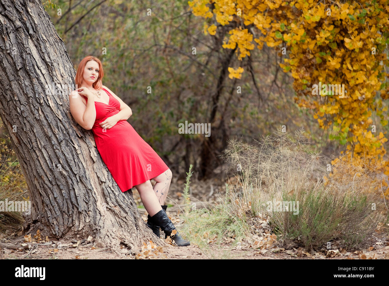 Beautiful Auburn Haired woman outdoors in nature, autumn. Stock Photo