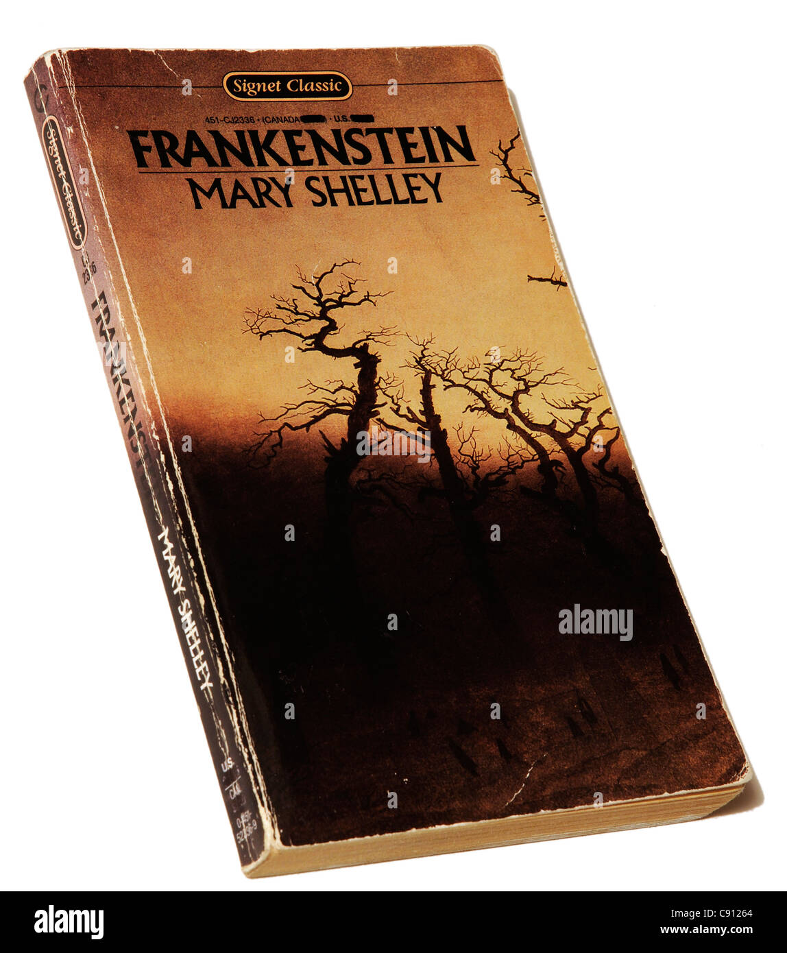Frankenstein by Mary Shelley Stock Photo