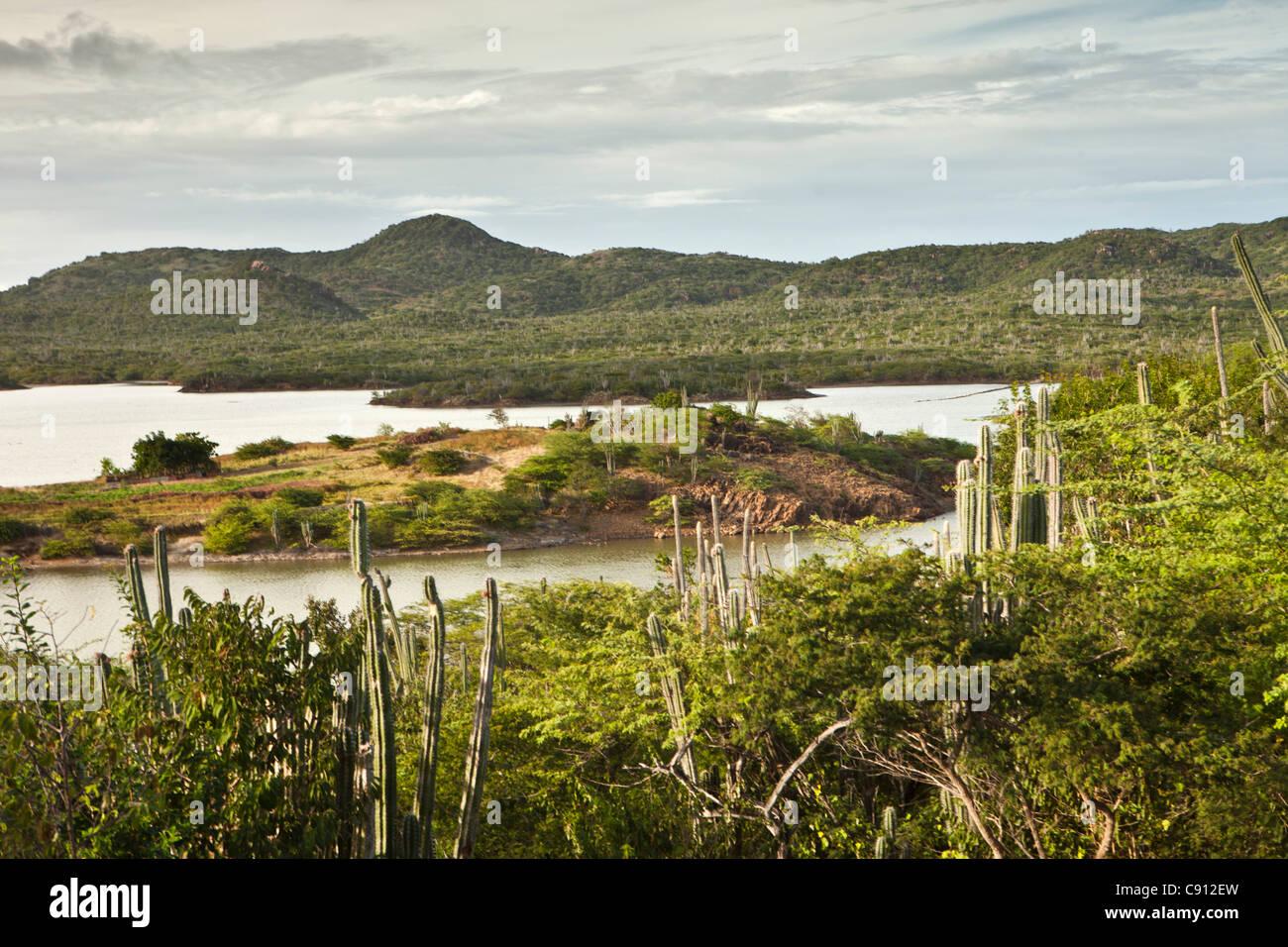The Netherlands, Bonaire Island, Dutch Caribbean, Washington Slagbaai National Park, - Stock Image