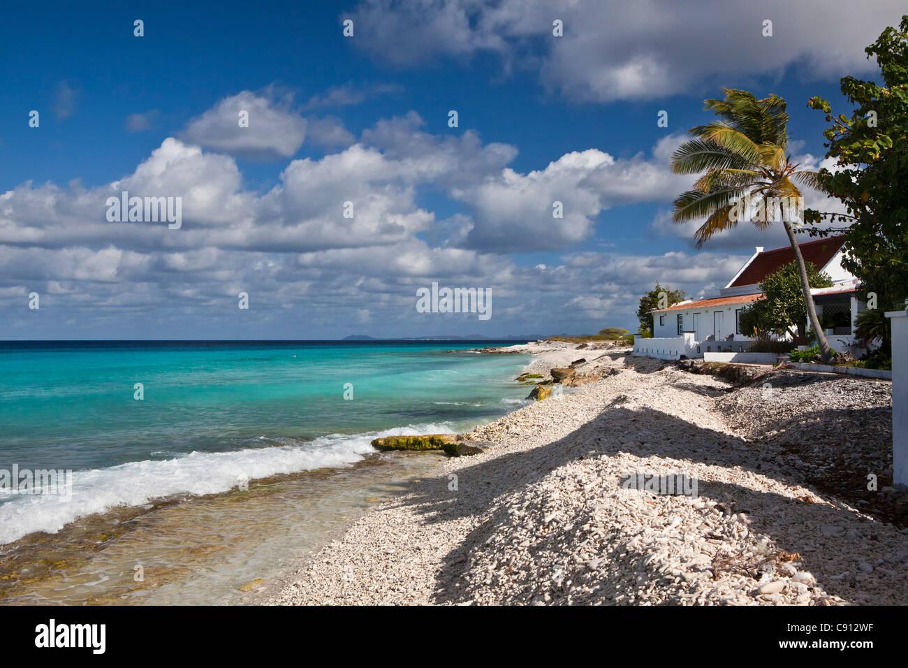The Netherlands, Bonaire Island, Dutch Caribbean, Kralendijk, house on beach. - Stock Image
