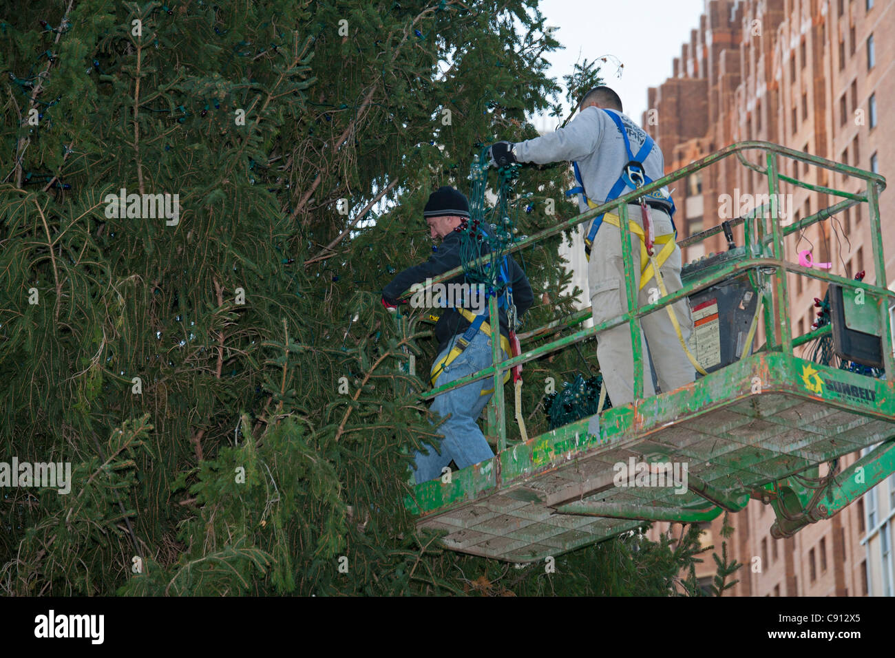 Detroit, Michigan - Workers string lights on a 69-foot Norway spruce Christmas tree in Campus Martius Park. - Stock Image