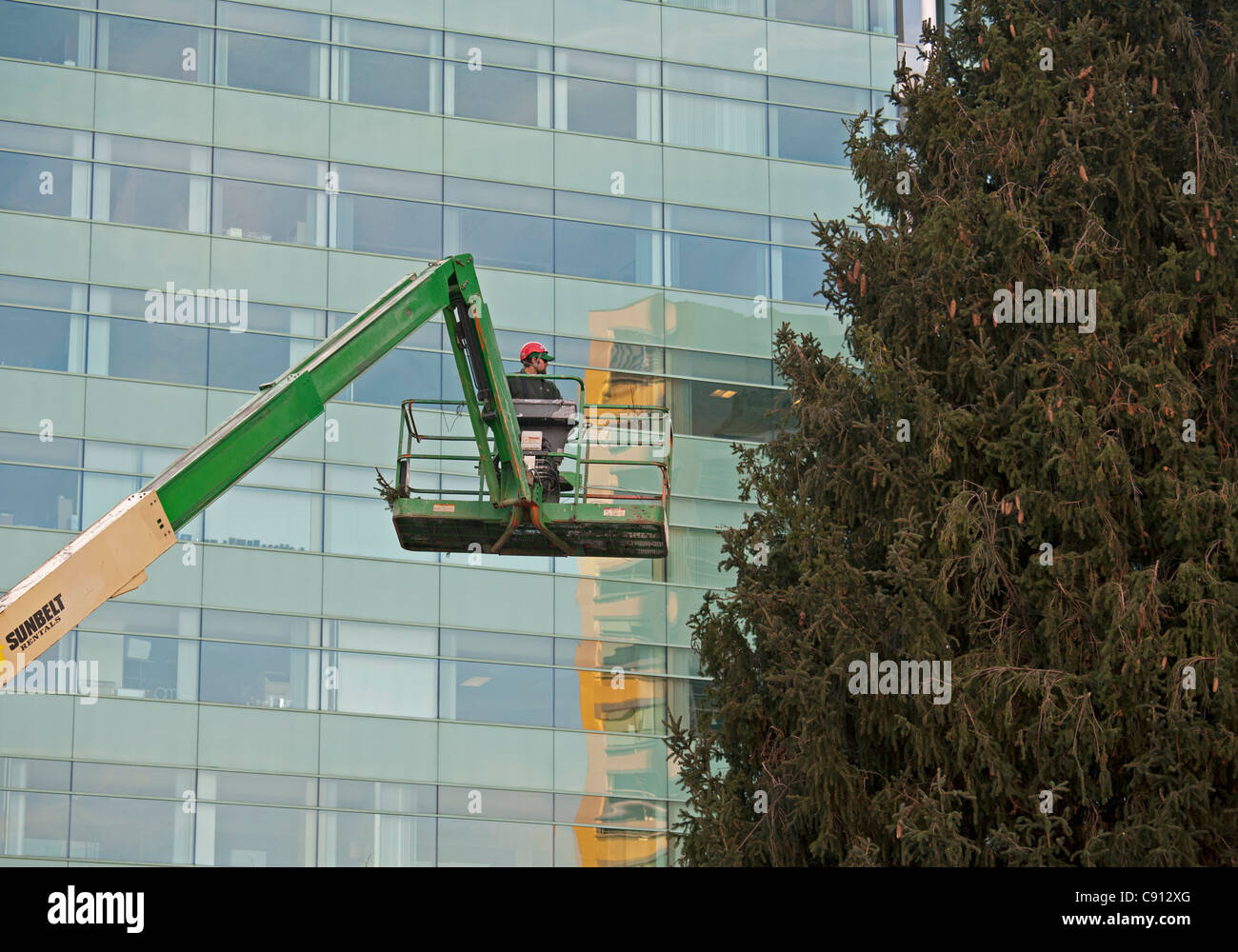 Detroit, Michigan - A worker prepares to decorate a 69-foot Norway spruce Christmas tree in Campus Martius Park. - Stock Image