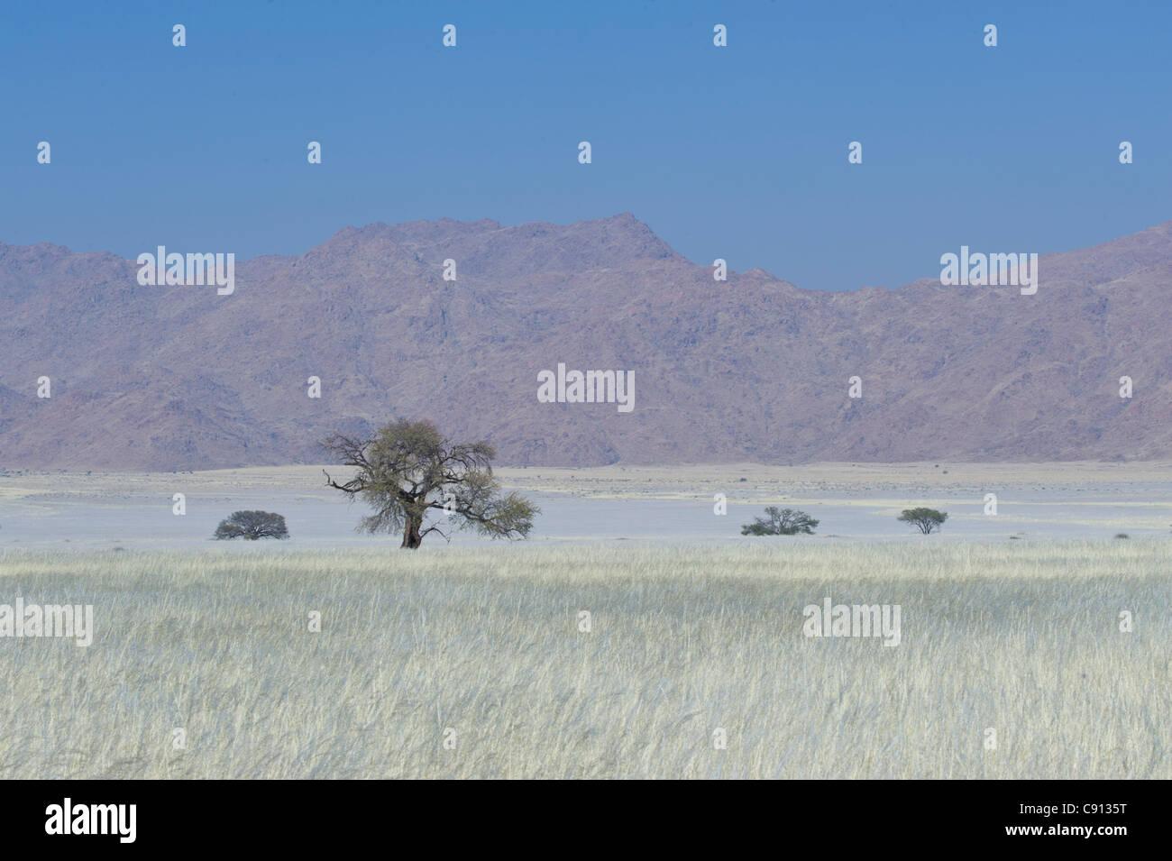 Koiimasis farm Tiras Mountains Namibia - Stock Image