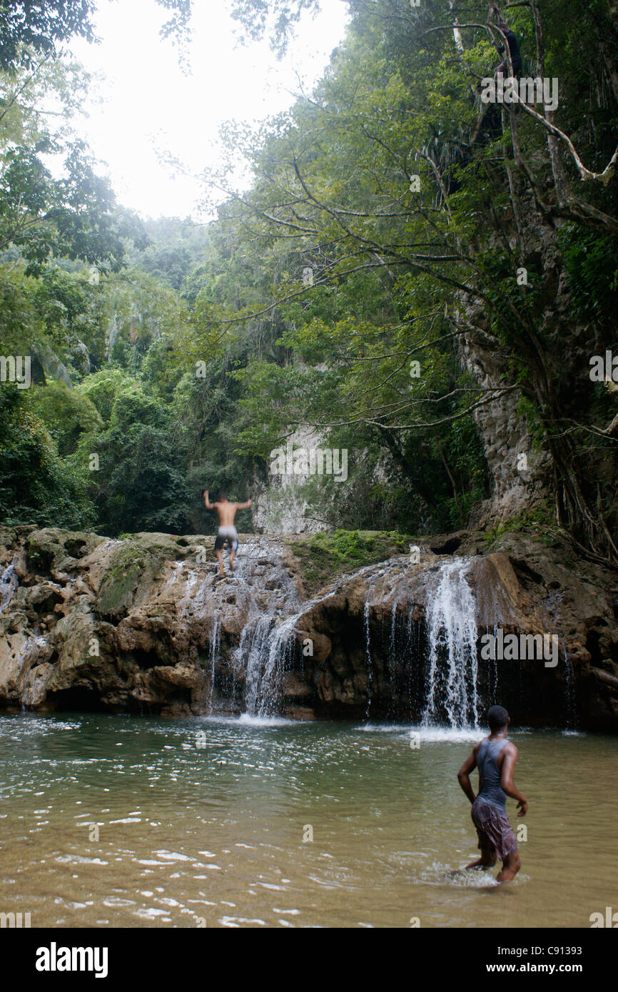 There Are Waterfalls And Small Pools In The Rivers Of Rainforest Stock Photo 39977199