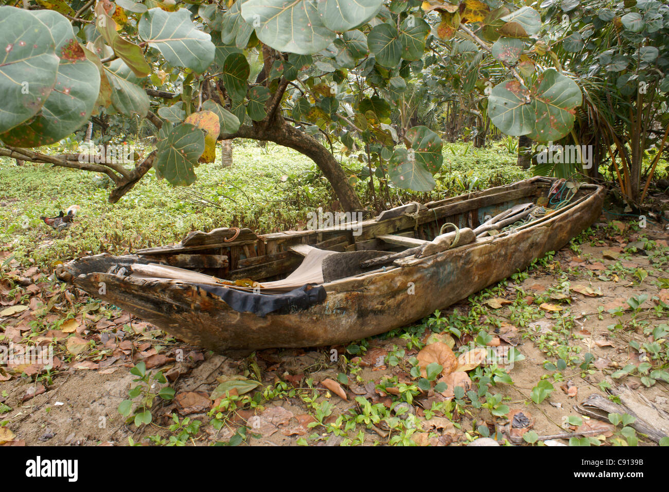 local people put to sea in dug out canoes to fish samana dominican