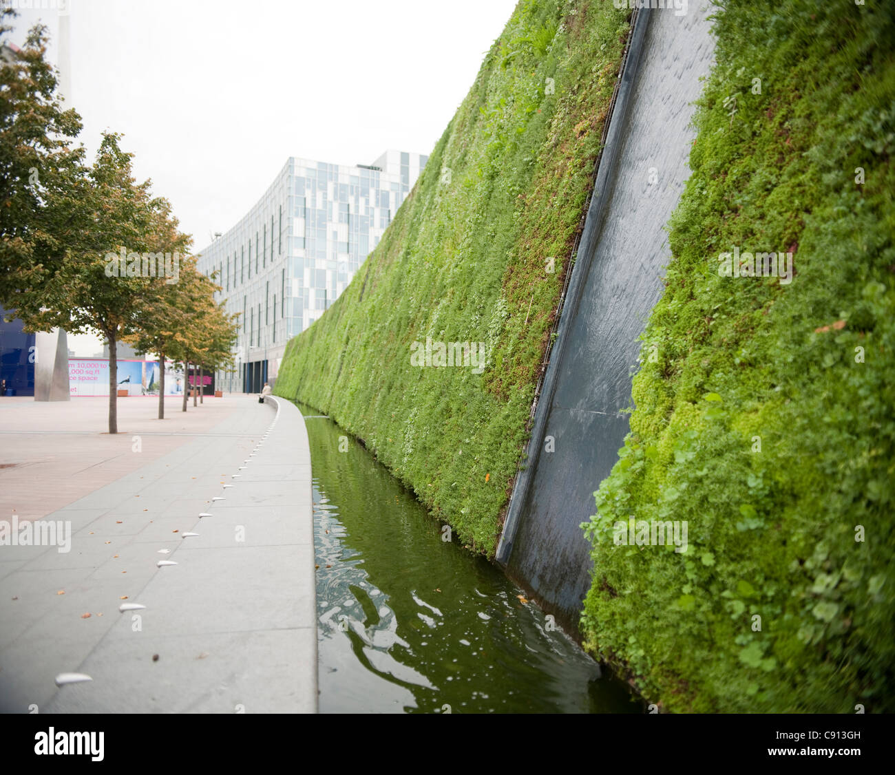 There Is A Large Living Wall Planted With Grass And Plants ...