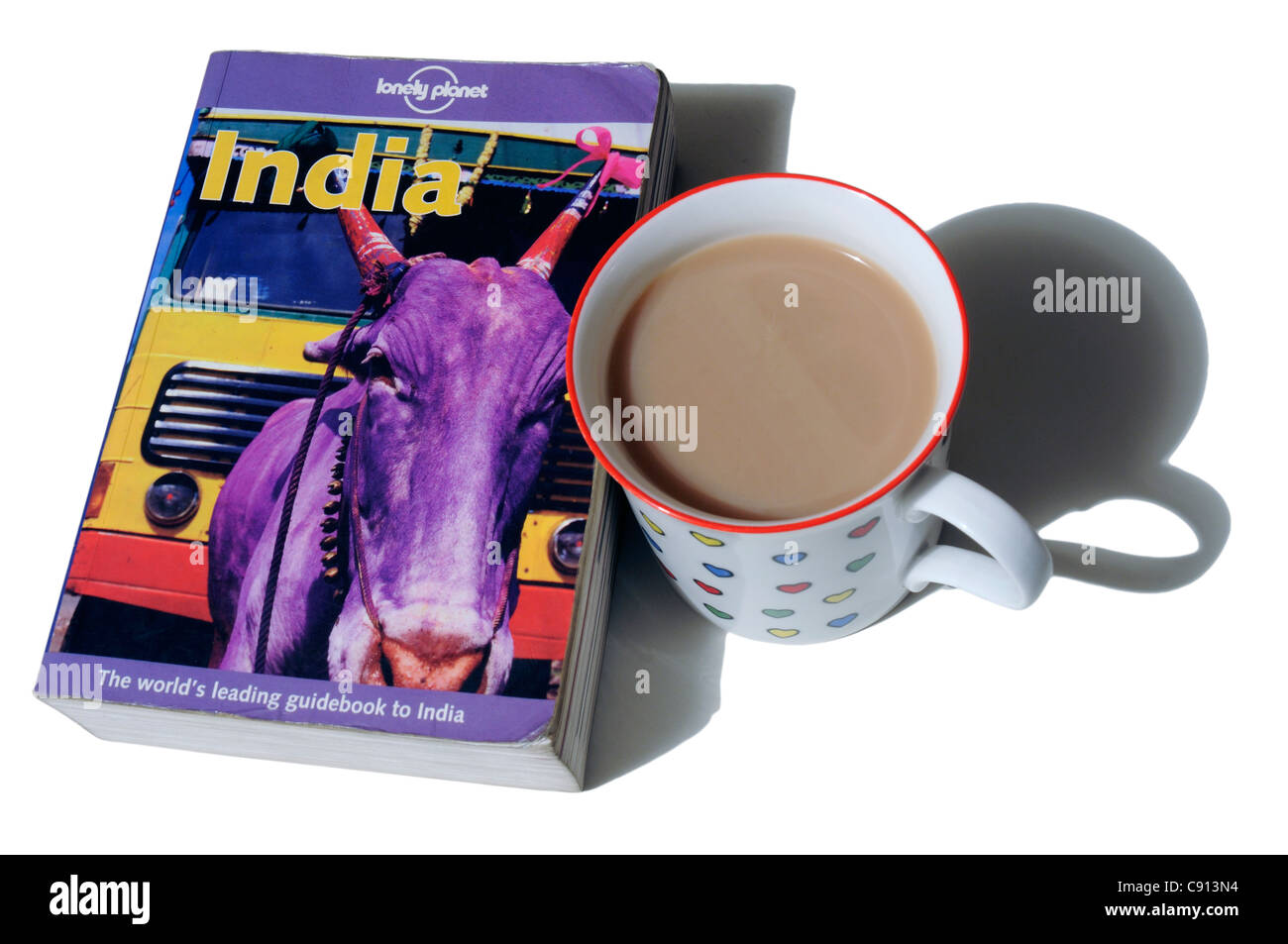The Lonely Planet Guide to India Stock Photo