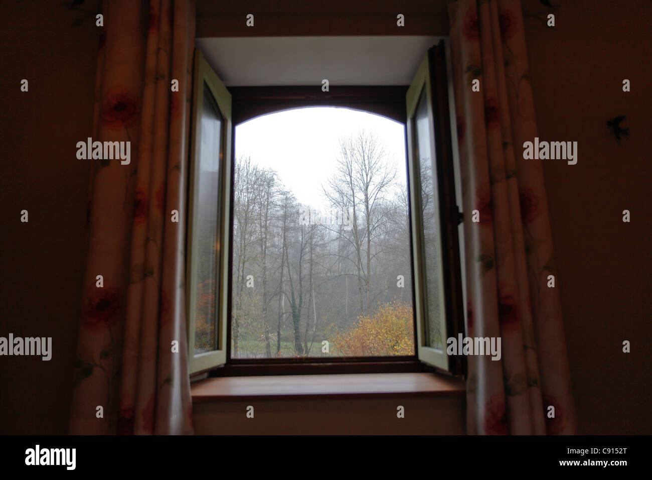View of the forest through a window, at Les Ardennes. - Stock Image