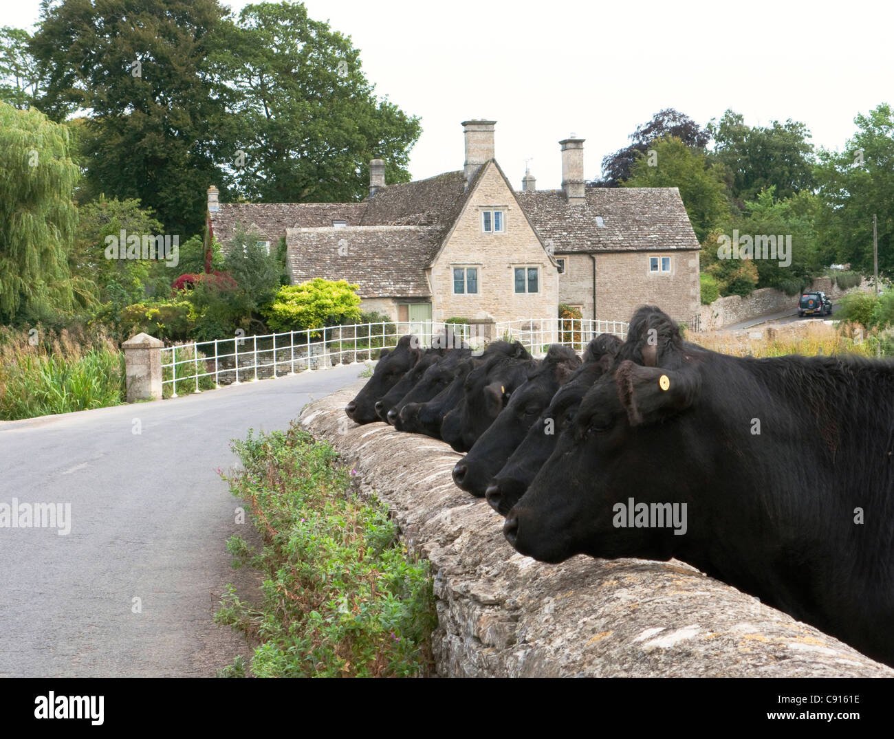Fairford is an attractive historic market town in Gloucestershire and there is a thriving market in organically - Stock Image