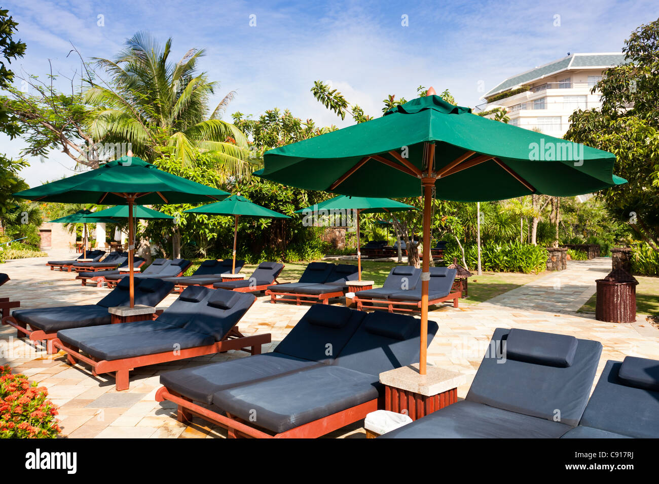 Lounge chairs and sunshades by the swimming pool in a ...