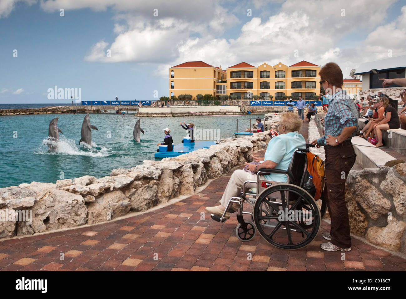 Curacao, Caribbean island, independent from the Netherlands since 2010. Willemstad. Sea Aquarium. Dolphin show. - Stock Image