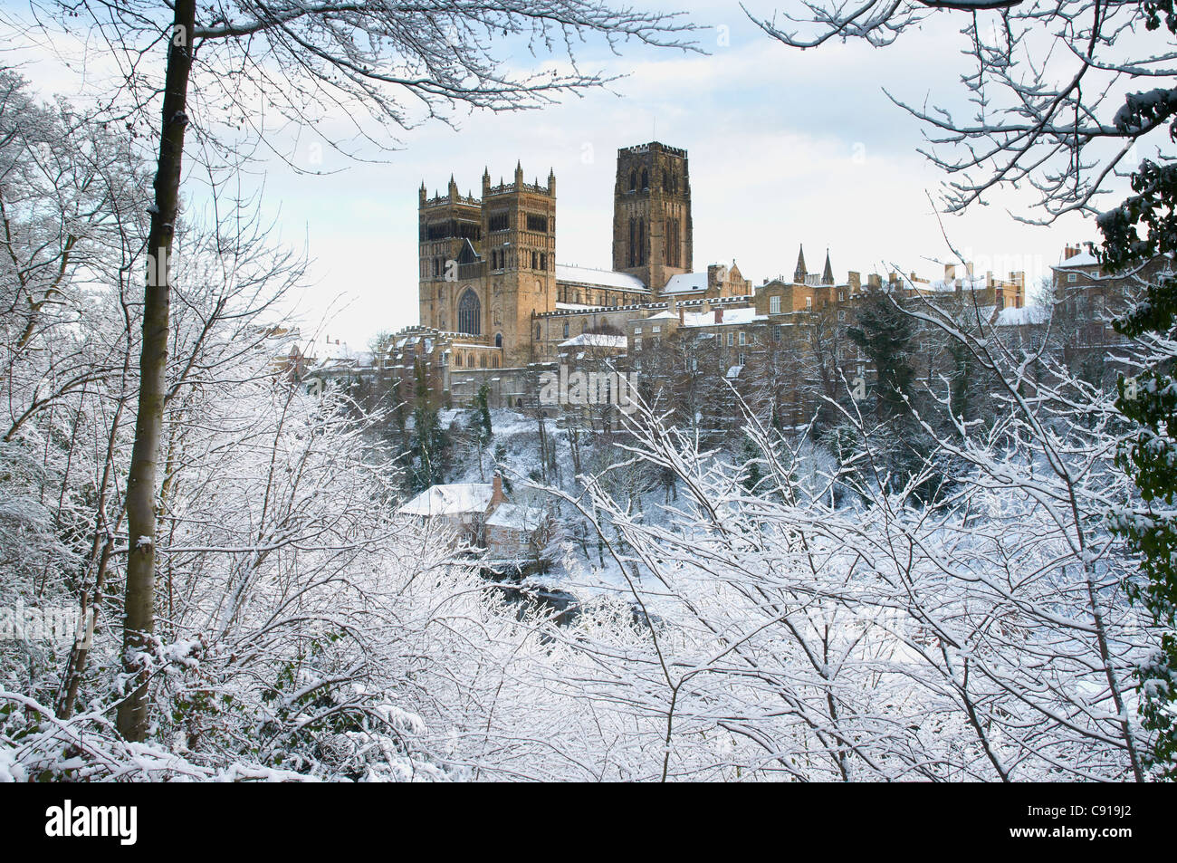 Durham City Durham Cathedral In Snow Stock Photo 39982154 Alamy