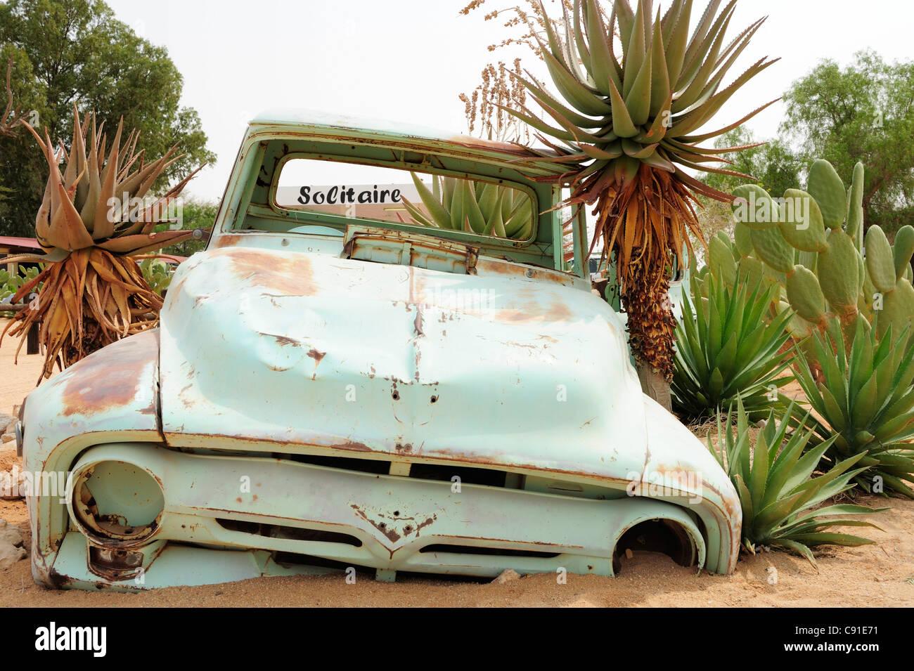 Car wreck standing in sand between cactus, Solitaire, near Namib Naucluft National Park, Namib desert, Namibia - Stock Image