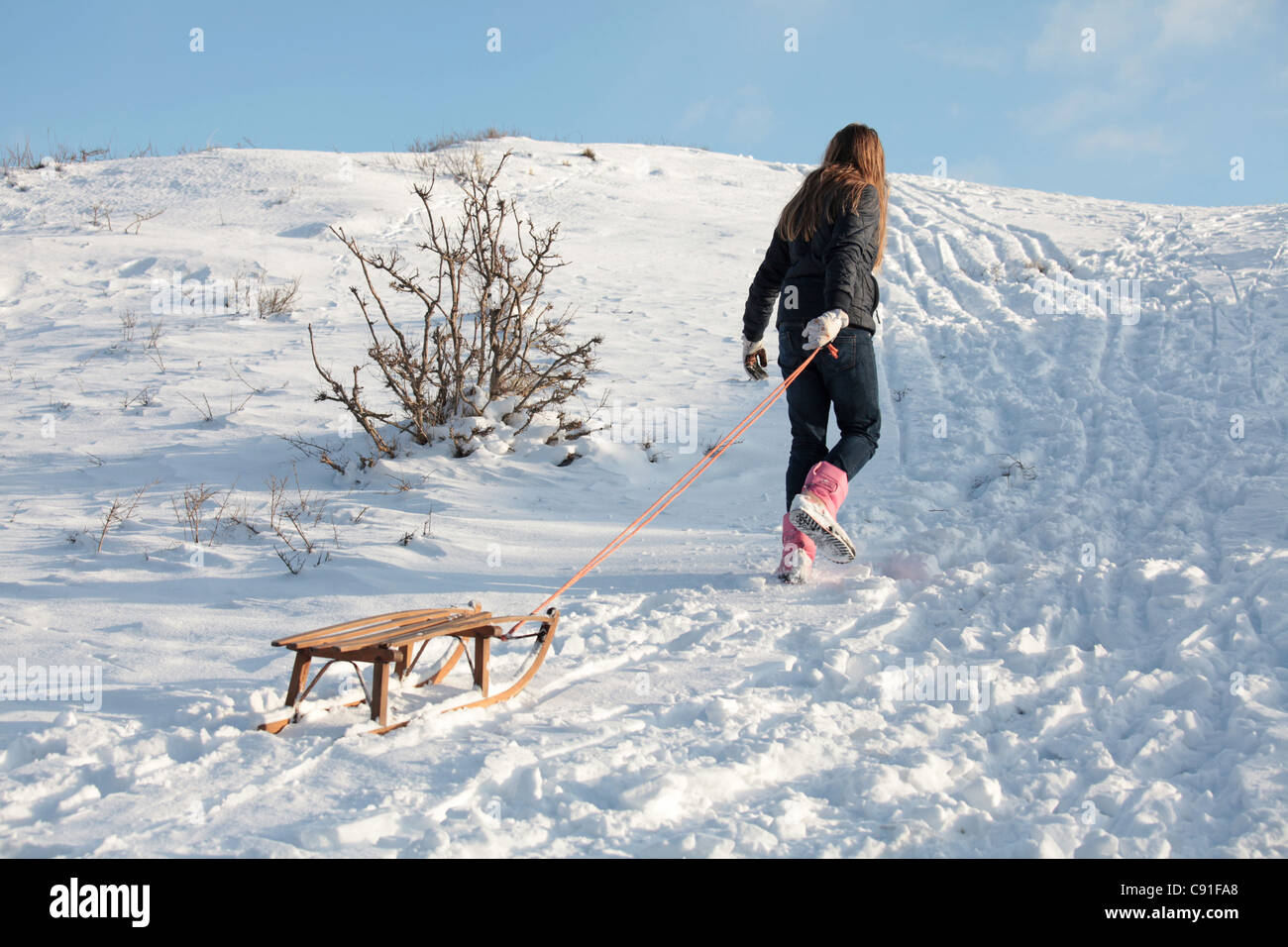 A girl is playing with her sledge in the snow - Stock Image