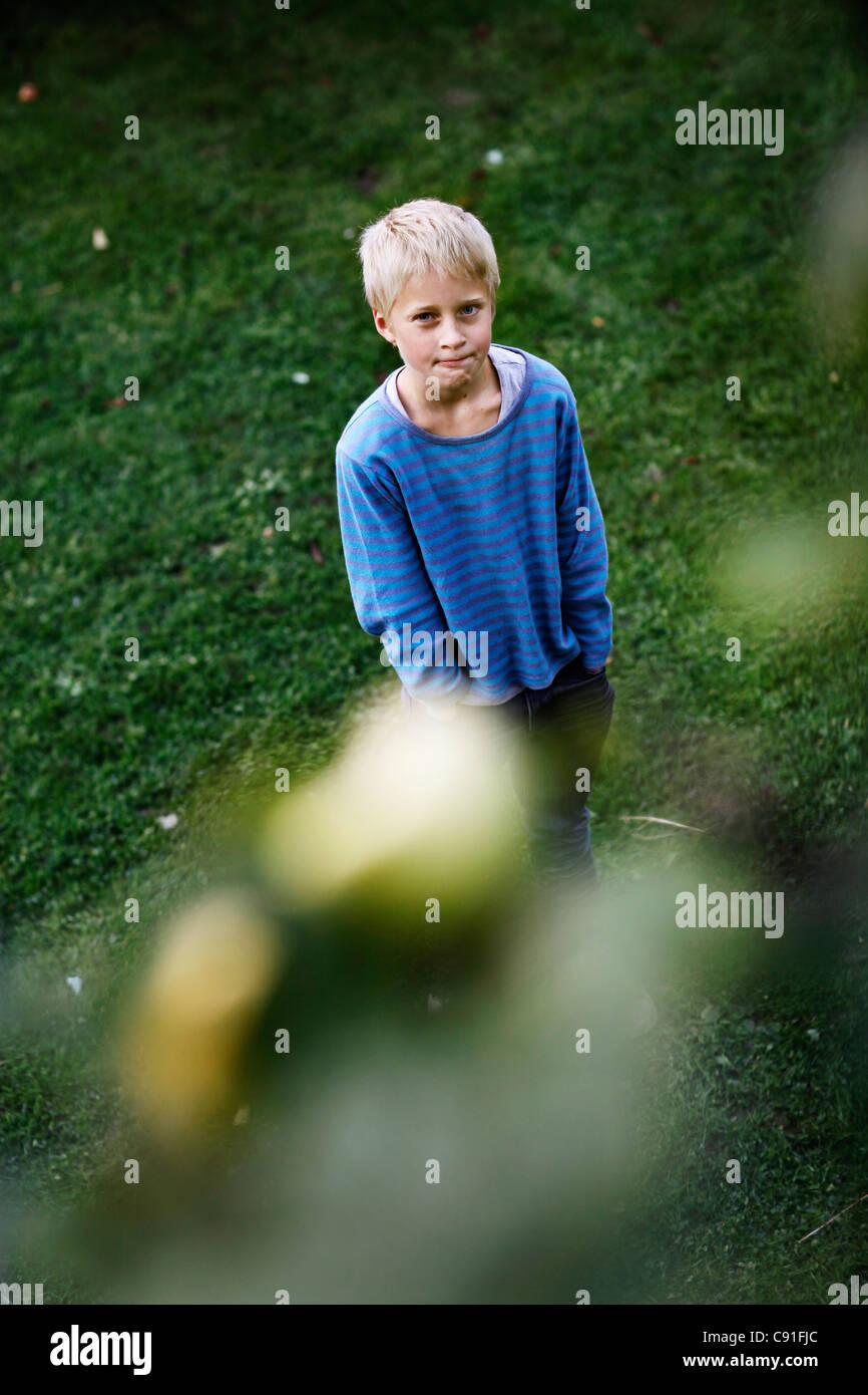 Boy admiring fruit in tree - Stock Image