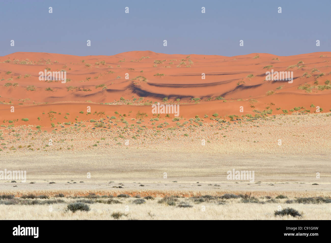 Red sand dunes of Namib Naukluft park along the Raod 707 in Namibia - Stock Image
