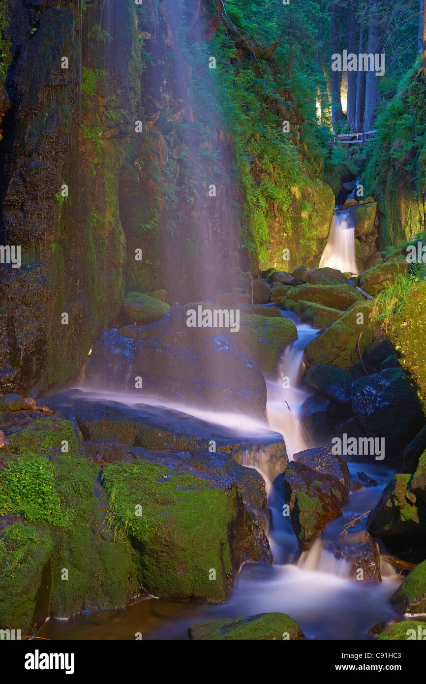 Canyon of the river Wutach (Wutachschlucht), Lotenbachklamm, Black Forest, Baden-Wuerttemberg, Germany, Europe - Stock Image