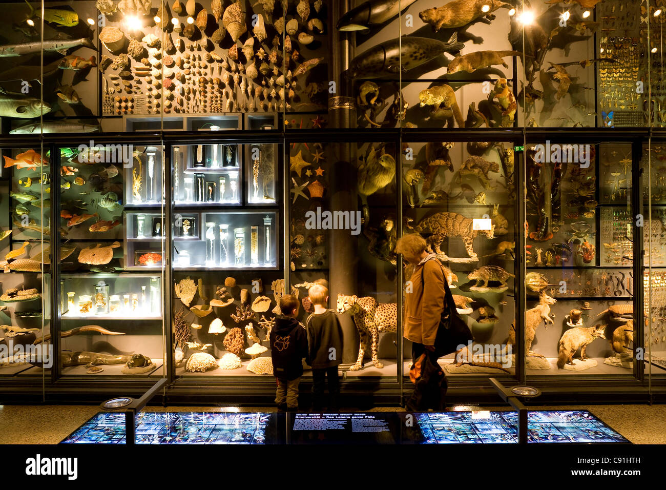 People at Berlin Museum of Natural History, Invalidenstrasse, Berlin-Mitte, Berlin, Germany, Europe - Stock Image