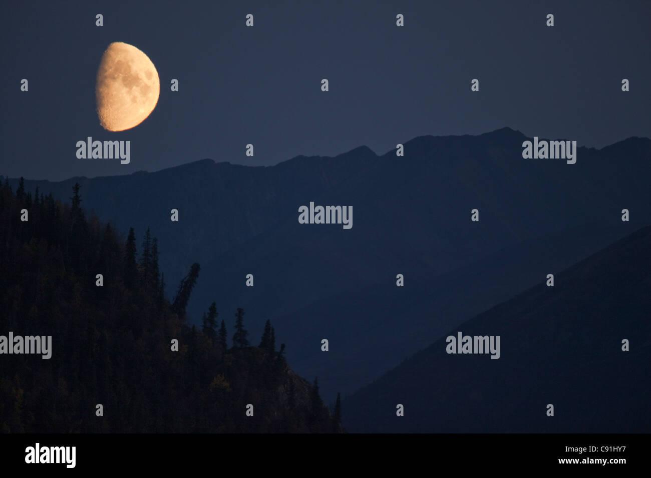 Moonrise near Denali National Park entrance, Denali National Park, Interior Alaska, Autumn - Stock Image