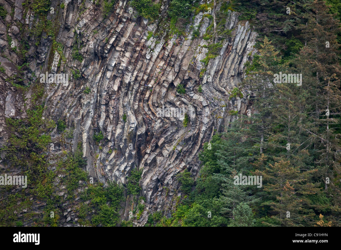 Tectonic rock formation on Hinchinbrook Island near Bear Cape, Prince William Sound, Southcentral Alaska, Summer - Stock Image
