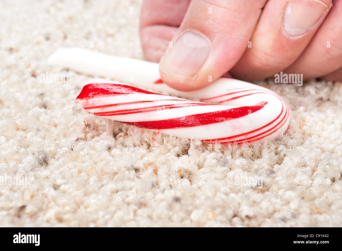 A man picks up a dropped candy cane that is stick to carpet fibers. - Stock Image